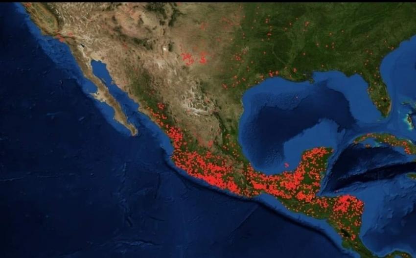 Nuestra Biosfera: La Tierra Está Enferma