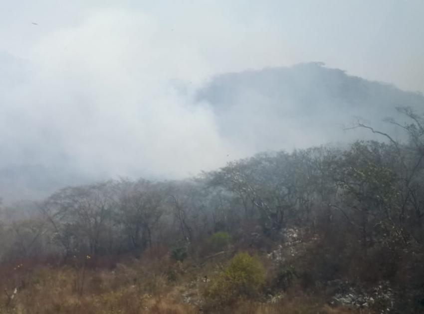 Se continúa operativo emergente para contención y liquidación de incendio en el Parque Nacional Cañón del Sumidero.