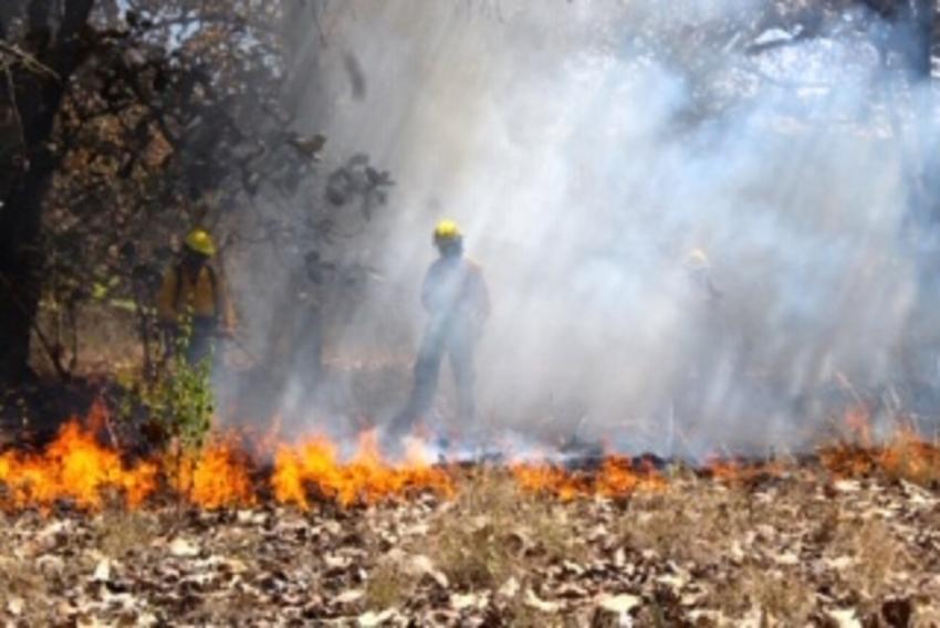 Nuestra BIOSFERA: Arde Chiapas