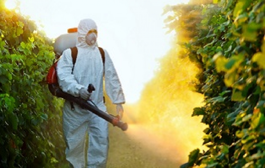 La CNDH recomienda a México restringir uso de plaguicidas de alta peligrosidad